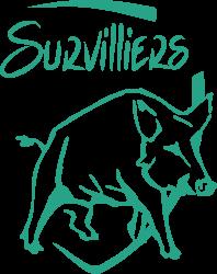 Ville de Survilliers